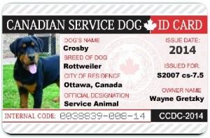 Free Registration Amp Service Dog Vest Kits Amp Supplies