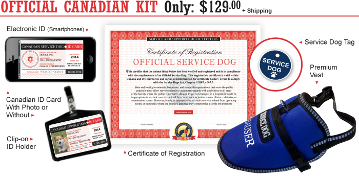 Therapy Dog Vest Canada
