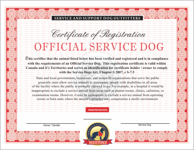 Canadian Service Dog Emotional and Therapy : Service Dog Vest And ID ...