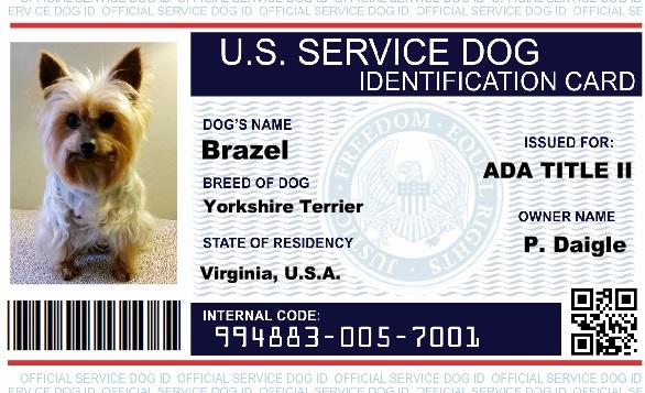 Service Dog Id Service Dog Registration Service Dog Vest And Id