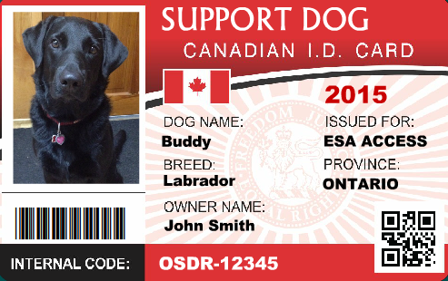 service dog id service dog registration : service dog vest and id ...