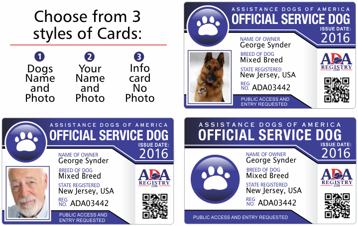 service-cards1