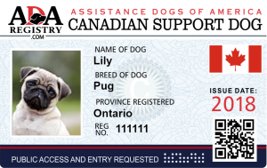 Canadian-Support-Dog-300x189